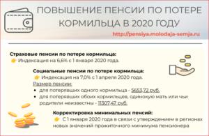 Пенсия по потере кормильца в 2020 году сумма размер в воронеже