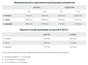 Минимальный размер алиментов в 2020 году в москве