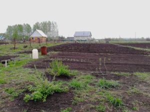 Деньги вместо земельного участка многодетным семьям 2020 башкортостан