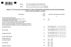 Образец заполнения декларации ип при закрытии в 2020 году