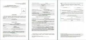 Образец заполнения заявления на гражданство рф в упрощенном порядке для беларусов