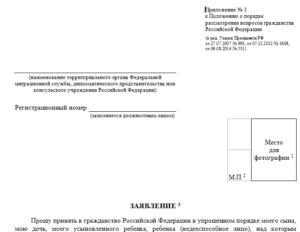 Консультант плюс бланк заявления о признании носителем русского языка 2020