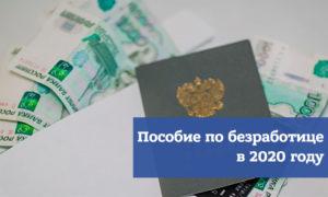 Размер пособия по безработице в 2020 году в москве