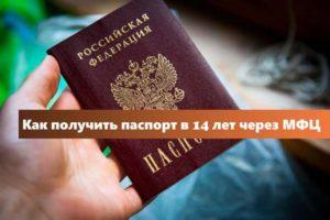 Паспорт 14 лет через мфц