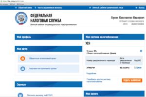 Декларация по усн ликвидация ип сайт фнс 2020