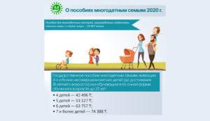 Все льготы и выплаты многодетным в москве 2020