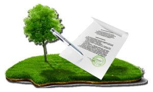 Как оформить в собственность арендованный земельный участок по торгам в 2020