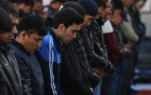 Амнистия для эмигрантов из таджикистана 2020