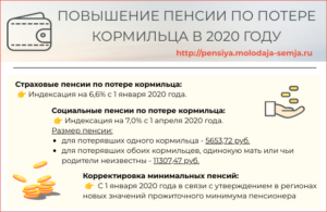 Пенсия по потере кормильца 2020 год