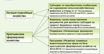 Региональные программы в 2020 для личного подсобного хозяйства