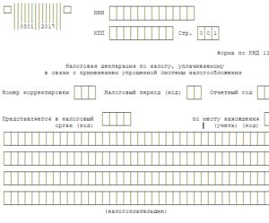 Какой код ликвидации ип в декларации по усн за 2020 год томская область