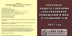 Устав тсж 2020 образец